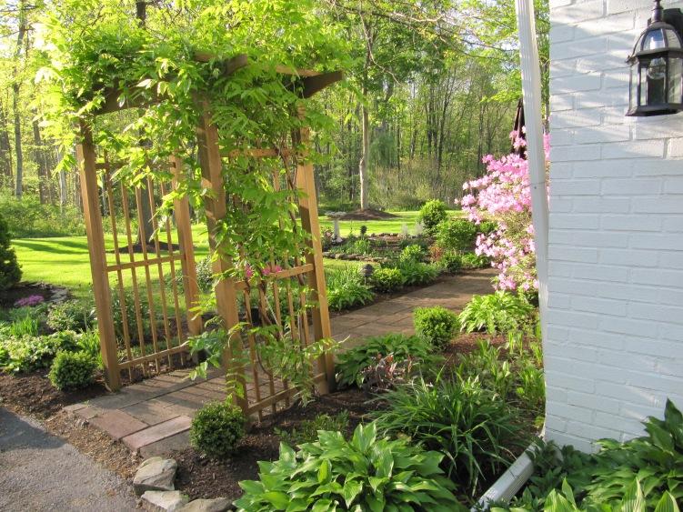 My Garden in Spring