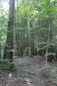 Sulphur Springs Trail