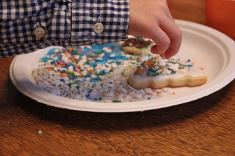 Too Many Sprinkles